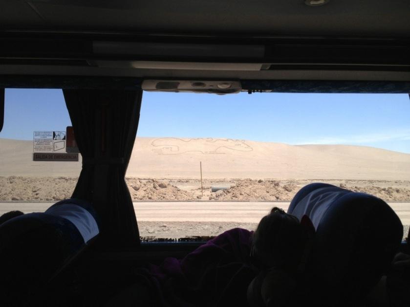 Blick aus dem Busfenster