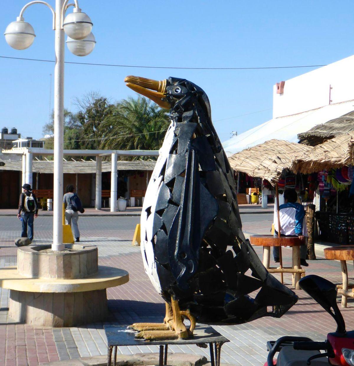 Paracas – Galapagos fürArme